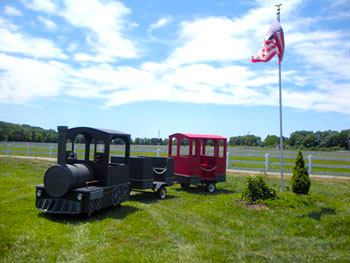 Large Train Ride for Kids and Adults Northern Virginia