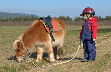 Pony Kid Field Reston Virginia