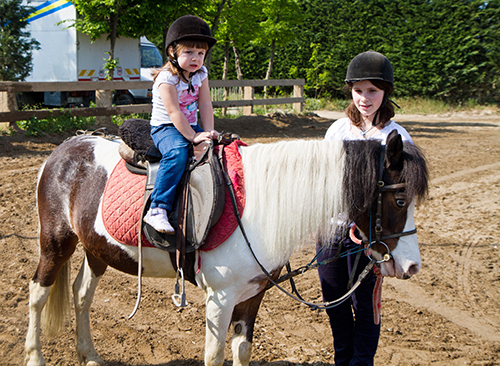 Pony Rides Reston Virginia